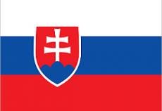 Переводы у судебного (присяжного) переводчика словацкого языка в Киеве