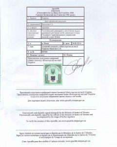 документ с проставленным апостилем - пример фото