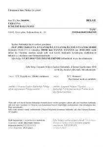 Перевод справки о несудимости на турецкий язык фото
